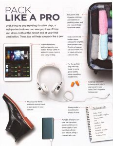 Travel Like a Pro 2